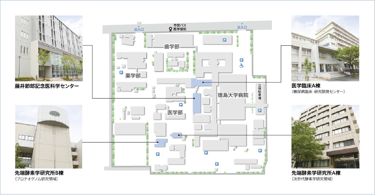 tokushima_access2